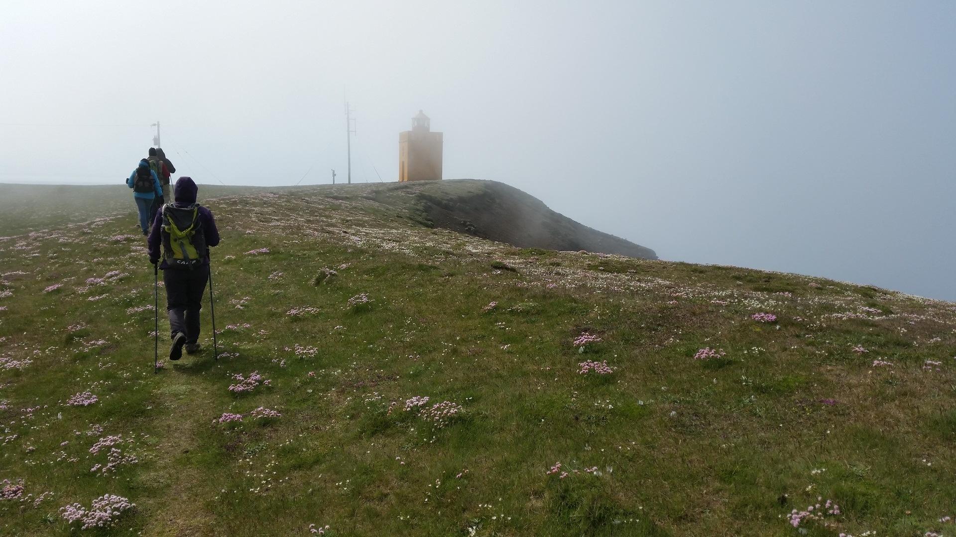 22 juin : de Hraunhafnartangi à Asbyrgi