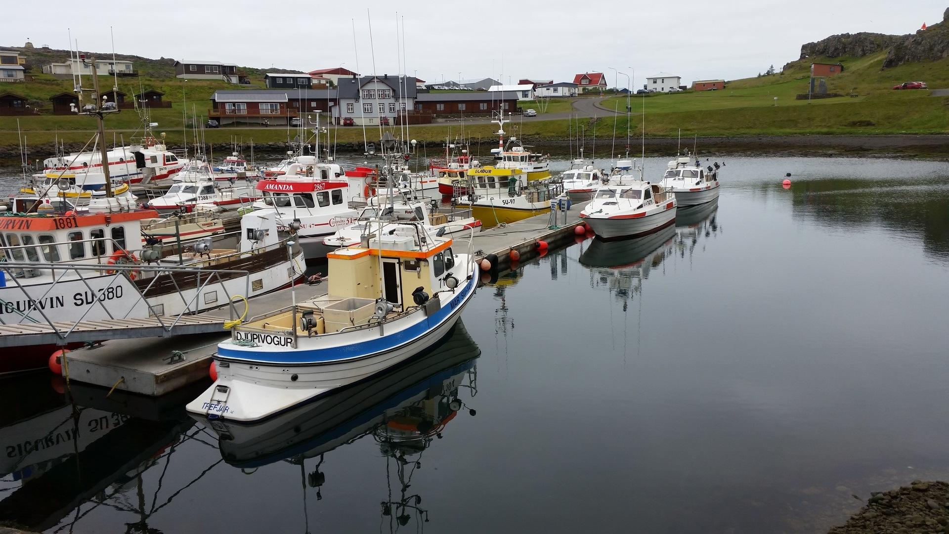 22 août : de Djúpivogur au fjord de Mjóifjördur