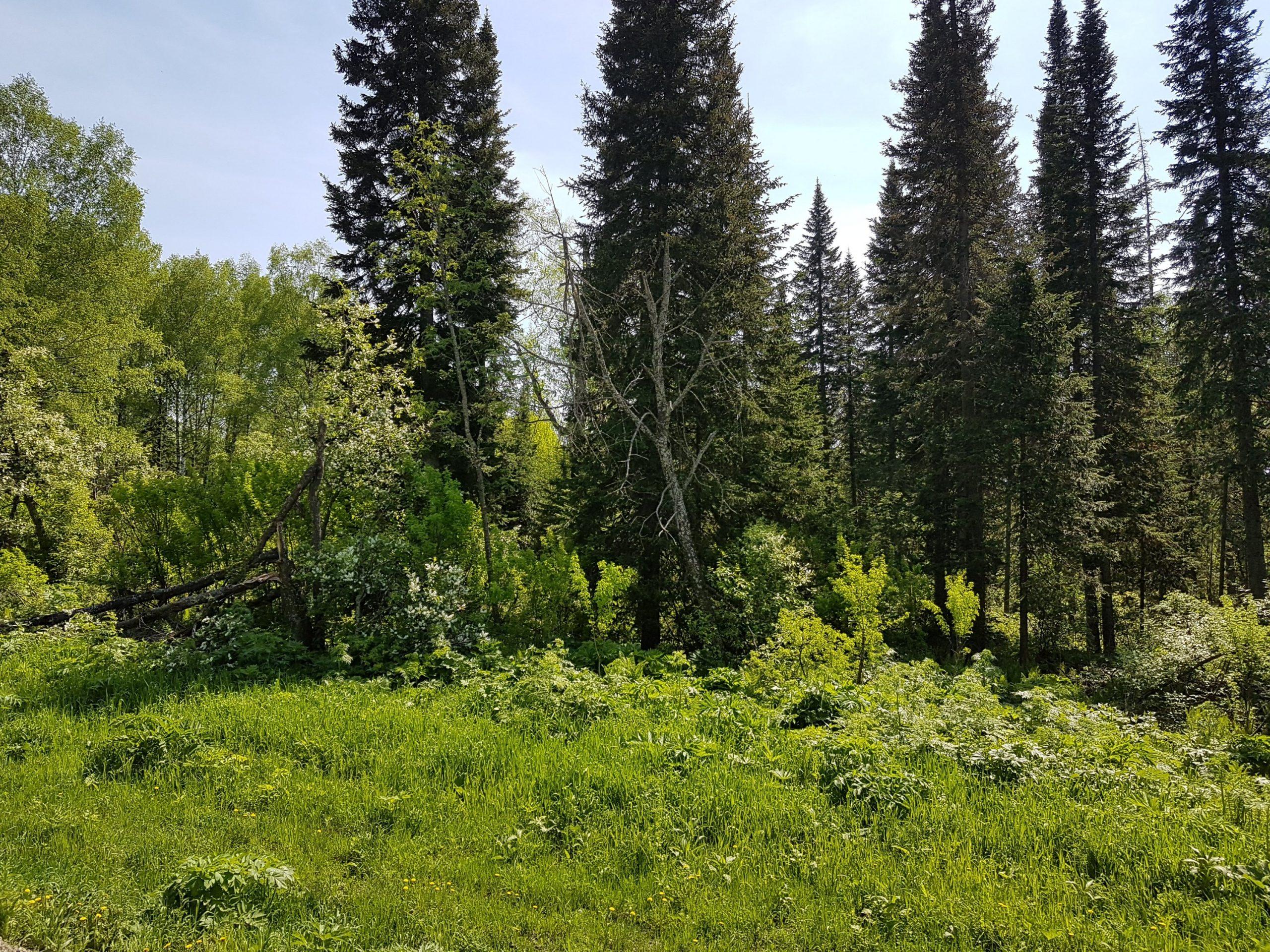 De Kemerovo à Irkoutsk - jours 1 à 3
