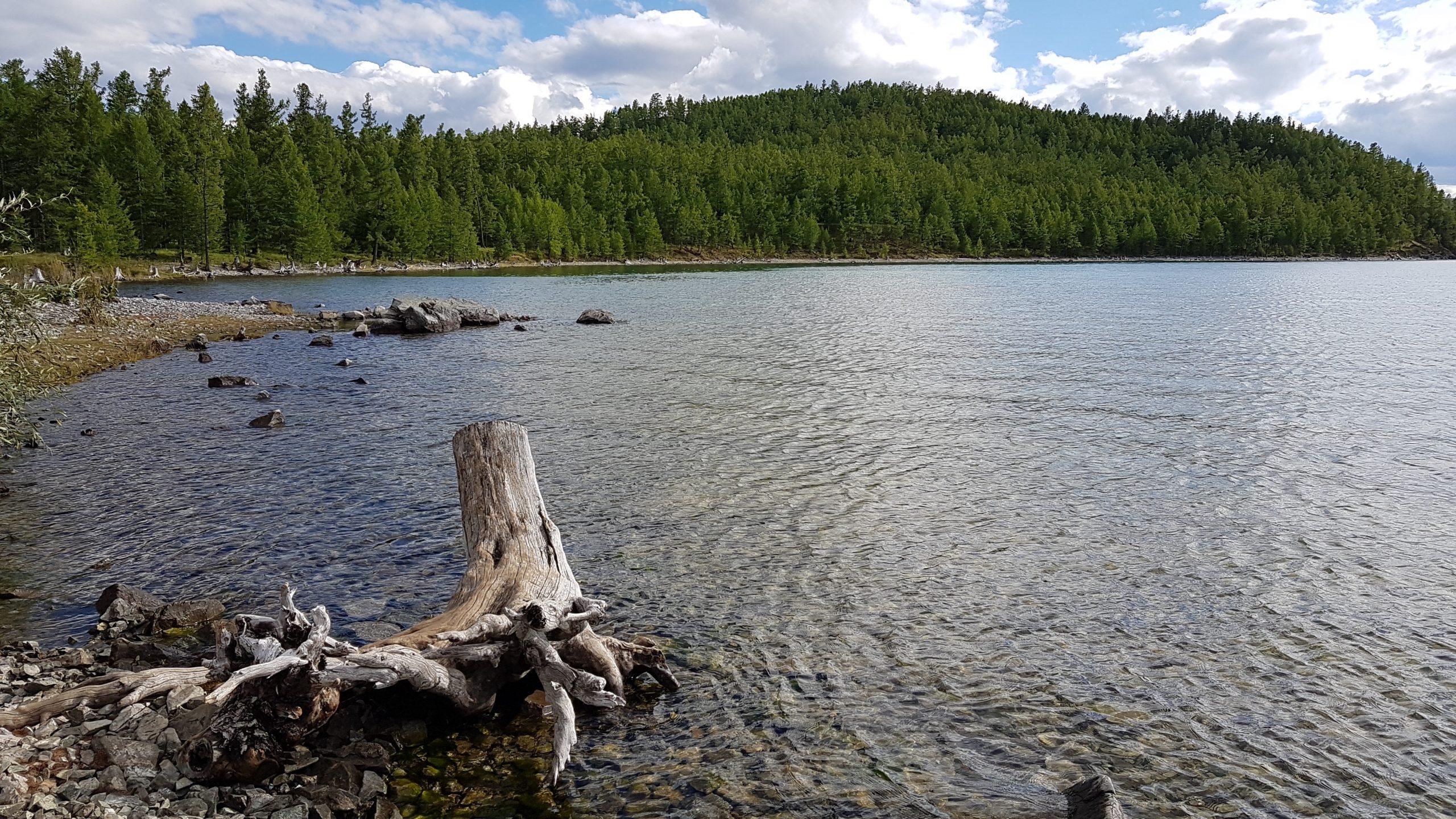 5 août : Lac Khövsgöl J2 (balade à pied et en bateau)