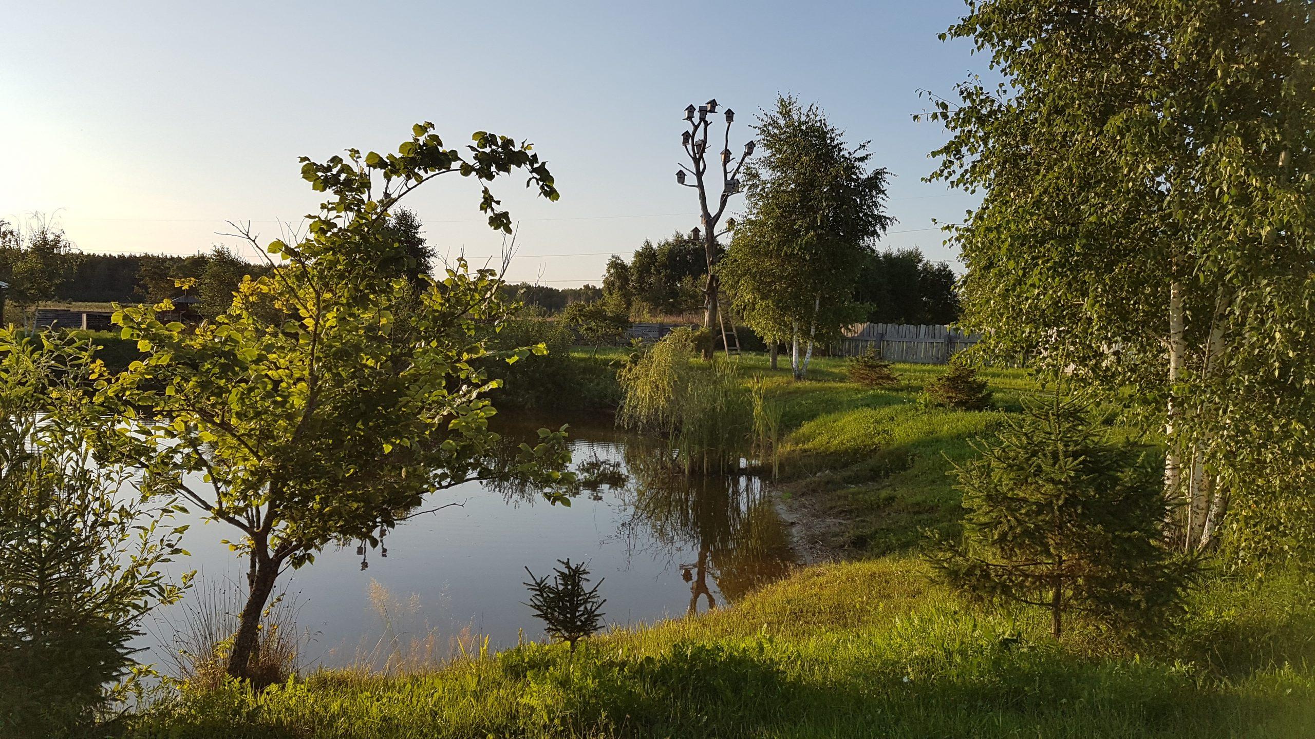 31 juillet : En route pour le parc national de Pripyatskiy - jour 2
