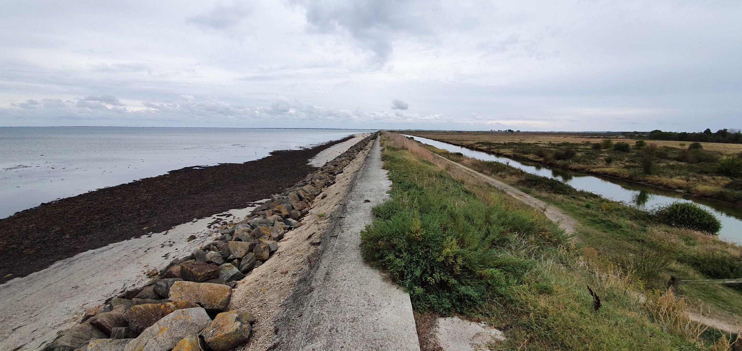 23 septembre : Réserve naturelle du Polder de Sébastopol