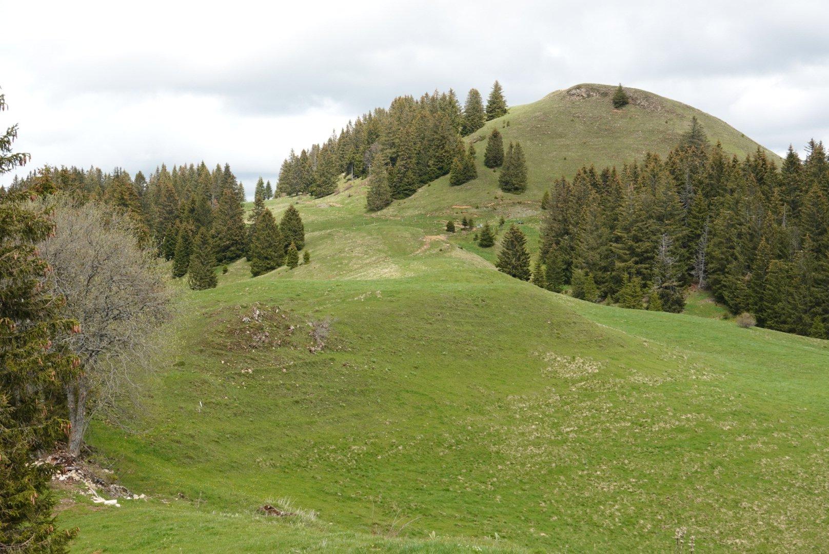 25 mai : Le Haut Jura
